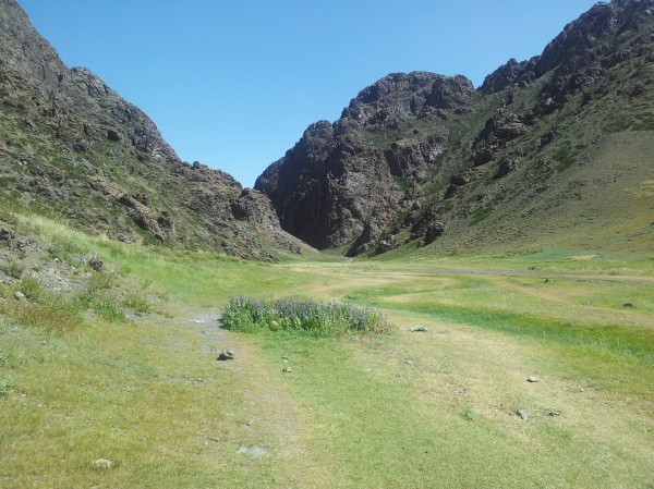 This green place, Yolyn Am, is actually in the Gobi!