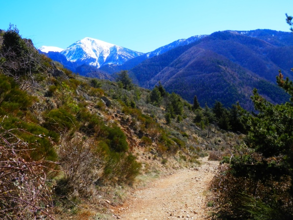 Beautiful, beautiful nature in the Pyrénées