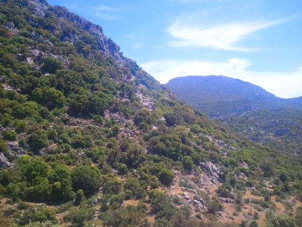 The trail between Selimiye and Turgut