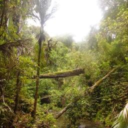 Hiking the Te Araroa trail, New Zealand: Part 1