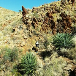 Reflections on hiking the Larapinta Trail