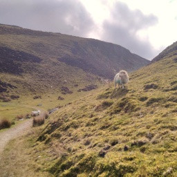Solo hiking & wild camping the Snowdonia Way